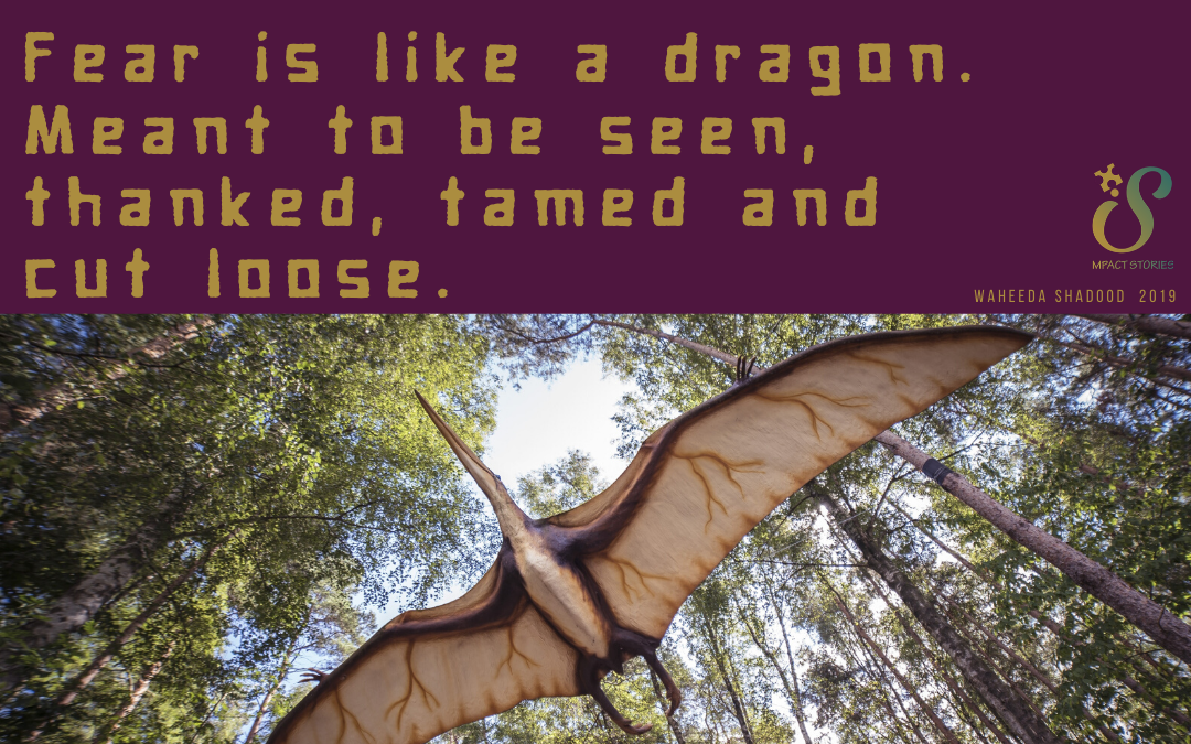 How to tame your dragons. Coming soon!